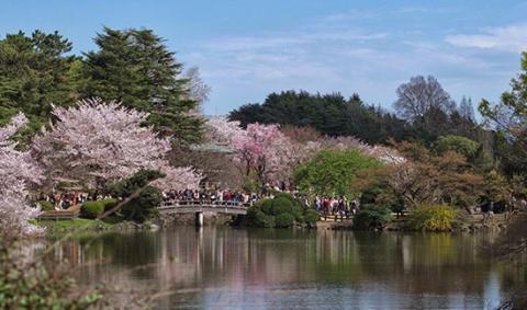 parc-shinjuku-tokyo